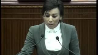 Milletvekilimiz Fazilet Özdenefe'nin 16 Aralık 2016 Meclis Konuşması