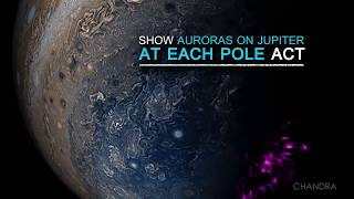 A Quick Look at Jupiter