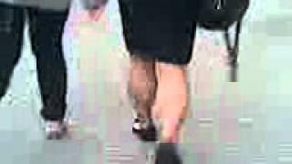 asian  street calves