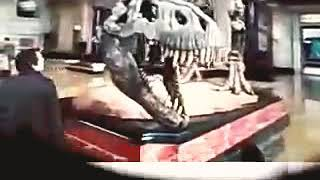 Night At The Museum Theatrical Trailer (2006) - SaneelGB - Today Is 11/03/2018 - YouTube Videos!?$#.