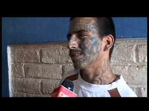 DEF TV Informe sobre pandillas 3 de 3 Violencia Mara Camino de destrucción.