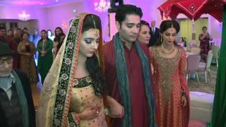 Naqvi Family Mehndi HL