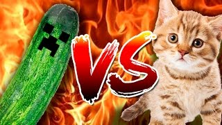 CATS VS CUCUMBERS - Funny compilation of cats scaring with cucumbers | FailTube