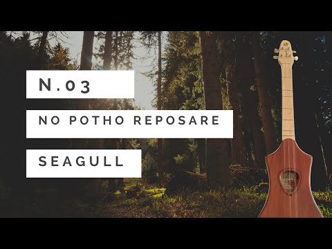 Xxx Mp4 No Potho Reposare Folk Italian Song Seagull Merlin Tutorial N 3 3gp Sex