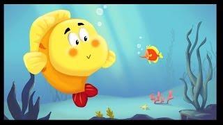 Les petits poissons dans l