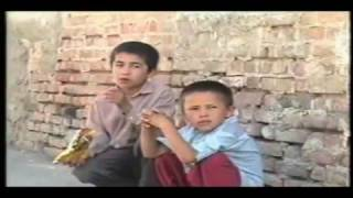 Street -  Directed By Shora Falah Vahdati