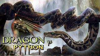 Dragon vs Python ll Latest Hollywood Action, Sci-fi Hindi Dubbed Movie ll Full Movie ll