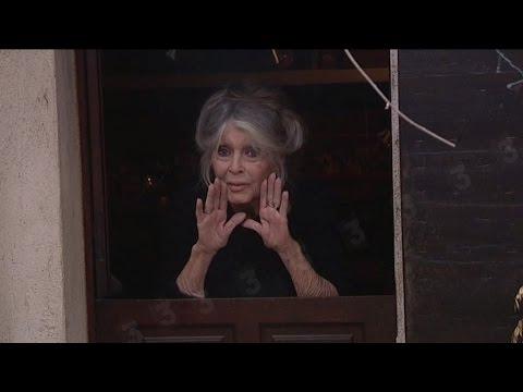 Xxx Mp4 EXCLU Brigitte Bardot Nous A Exceptionnellement Ouvert Les Portes De Sa Maison Dans Le Var 3gp Sex