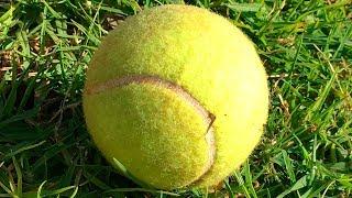 If You See a Random Tennis Ball, Don
