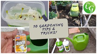 10 Gardening Tips & Ideas every gardener should know - in 4K