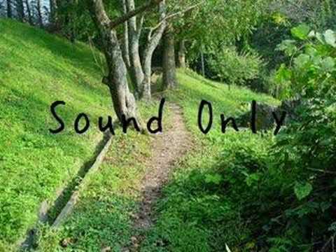 Original Music #4 [Test SE]