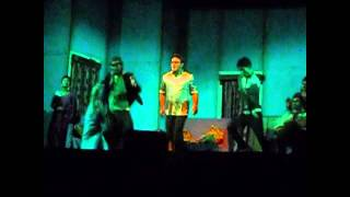 Assamese theatre video song bilin hom by Mrinal Baishnab Itihas Theatre 2013-14