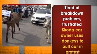 Tired of breakdown problem, frustrated Skoda car owner uses donkeys to pull car - ANI News