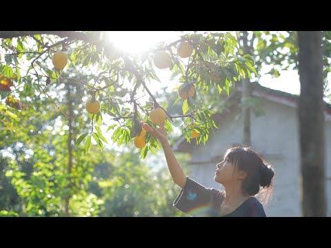 挂一盏观花月� �灯,正配这一整桌的黄桃小食 Peach Dishes Liziqi Channel