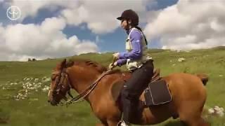 Montenegro Horse Ride