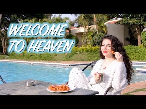 MIND BLOWING INDIAN FOOD & INDIA MONSOON HEAVEN THE GATEWAY HOTEL CHIKMAGALUR TRAVEL VLOG IV