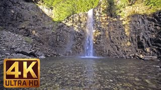 4K (Ultra HD) Waterfalls Scenery with Nature Sounds - Water & Forest - Video Trailer 1