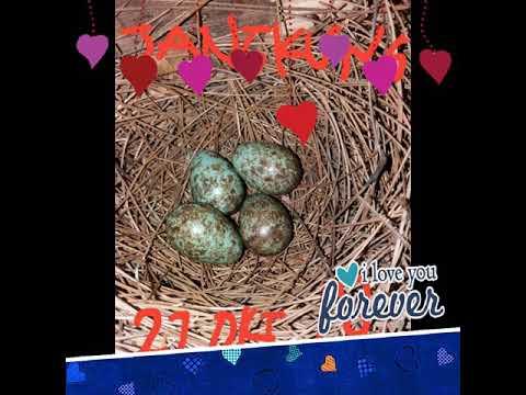 Xxx Mp4 Jones Bf Happy Photo 3gp Sex