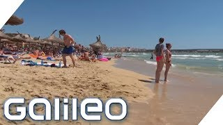 Reiseziel Mallorca: Wer verdient hier an den Urlaubern? | Galileo | ProSieben