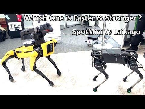 Which One is Faster Laikago By Unitree Robotics Meeting Spotmini From Boston Dynamics.