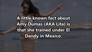 Who Banged WWE Lita?