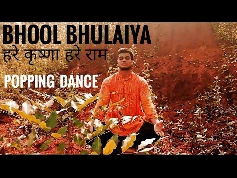 Bhool Bhulaiyaa   Akshay Kumar   Dance Cover   Akki Poppin   Hare Krishna Hare Ram