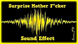 [HQ] Surprise Mother Fucker Sound Effect (FREE DOWNLOAD)