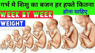 Weight of baby during pregnancy week by week