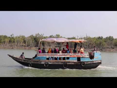 Xxx Mp4 The Sundarbans সুন্দরবন 06 Feb 2017 3gp Sex