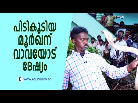 Cobra gets very aggressive after being rescued | Vava Suresh | Snake Master