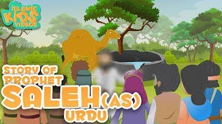 URDU ISLAMIC CARTOON FOR KIDS | Story of Prophet Saleh (AS) | Quran Stories For Kids in Urdu