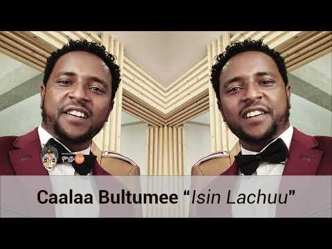 Xxx Mp4 Ethiopian Music Caalaa Bultumee Isin Lachuu New Ethiopian Oromo Music 2019 Official Video 3gp Sex