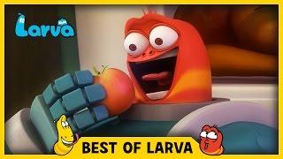 LARVA | BEST OF LARVA | Funny Cartoons for Kids | Cartoons For Children | LARVA 2017 | WEEK 12