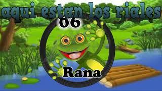 LOS MAGOS LOTTO ACTIVO DATOS DE HOY 13/10/17