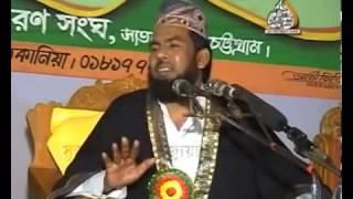 Moulana Taiabur Rahman 3
