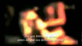 Rammstein Pussy Subtitulos en español Video official 360p