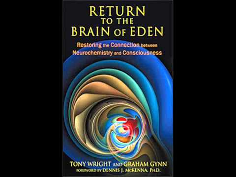 Oral Sex Molecular Engineering and the Fall from the Brain of Eden.