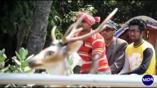 Tin Chakar Taroka Muvie Treiler 2016