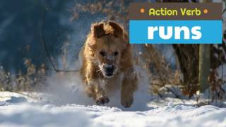 Action Verbs for Children | Classroom Video
