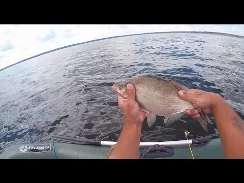 все о ловле леща с лодки видео