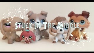 LPS: Stuck In The Middle