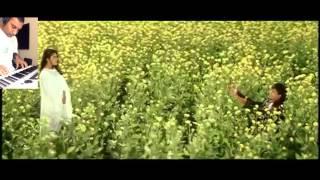 Tujhe Dekha To Ye Jana Sanam - Instrumental Cover