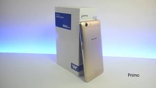 Walton Primo RM2 mini Golden - First Impression
