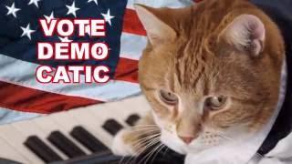 VOTE KEYBOARD CAT 2016!