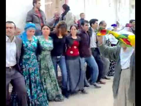 Kızıltepe Düğünleri Daweta Şebiya Şebililer Düğünü