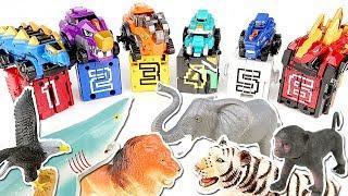Doubutsu Sentai Zyuohger & Dino-core Transformation Real Dinosaur! Cube 1-6 Combination Toys
