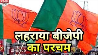 Odisha में लहराया BJP का परचम, Zila Parishad election में 10 गुना सीटों पर जीत