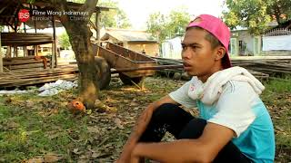 SUDREK FILME WONG INDRAMAYU ( Official Vfideo HD )