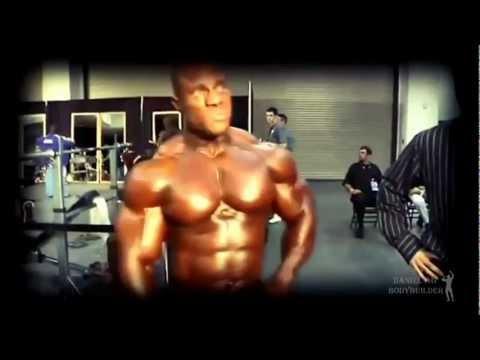 Entrenamiento Completo de Musculación Versión Completa