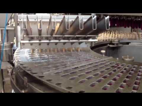 Palitera picoletera ZURIS rotativa automatica 7000 picole h con baño de chocolate